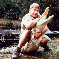 steve-irwin-unusual-deaths